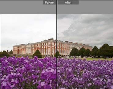 Flowers color corrects in Adobe Lightroom