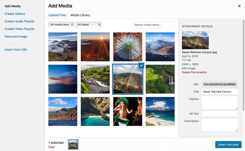 Adding image media to WordPress website